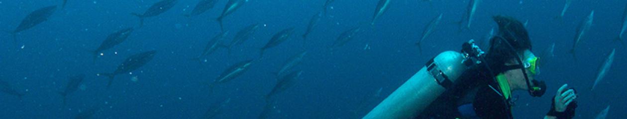 H₂O-Aquatische Ökologie